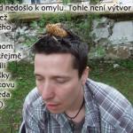 mokon2013_110