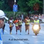 polmaraton2013_09