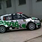 rally2013_113