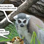 zoo_066