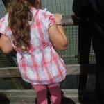 zoo_082