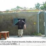 zoo_084