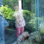 zoo_112
