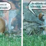 zoo_137
