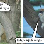 zoo_138
