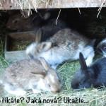 prazdniny14_099