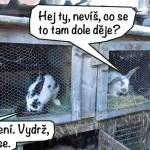 prazdniny14_102