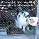 prazdniny14_108