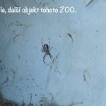 prazdniny14_113