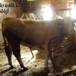 prazdniny14_116