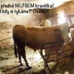 prazdniny14_117